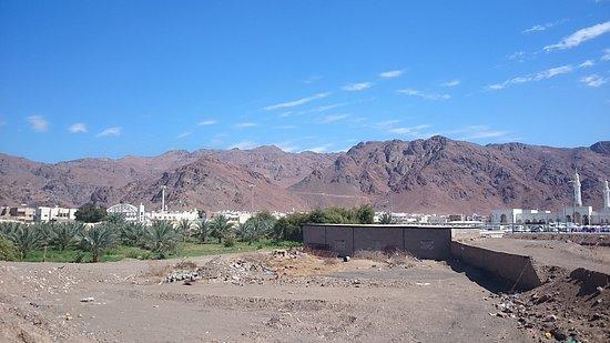 Mount Uhud: DSC_0371_large.jpg