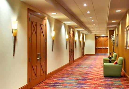 Newton, MA: Commonwealth Ballroom    Foyer
