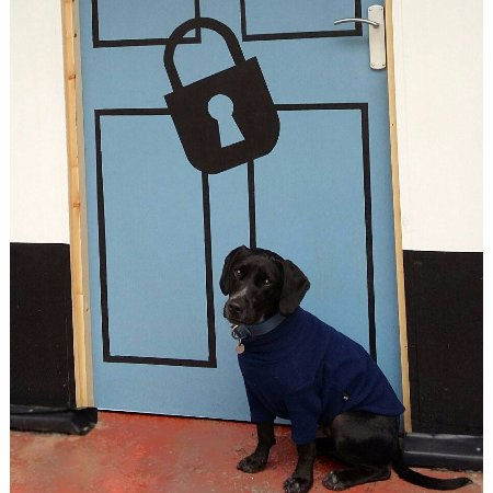 The Locked Door Escape Games & The Locked Door Escape Games (Aberdeen) - 2018 All You Need to ...