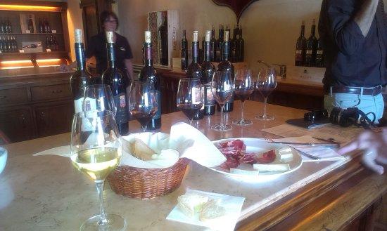 Montalcino, Italy: leckere Weinprobe mit gutem Essen
