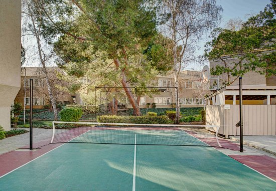 Mountain View, CA: Sports Court