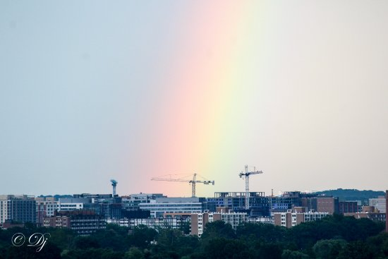 DoubleTree by Hilton - Washington DC - Crystal City: Rainbow from hotel window