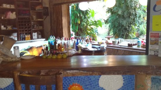 San Vito, Costa Rica: The view of the grounds through the inside of the bar area.