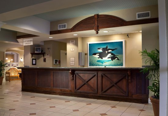 Residence Inn Orlando at SeaWorld照片