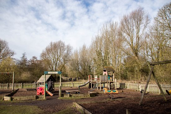 Milton Country Park : Play Park