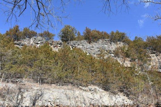 Roubidoux Creek & Spring: Cliffs behind the Spring