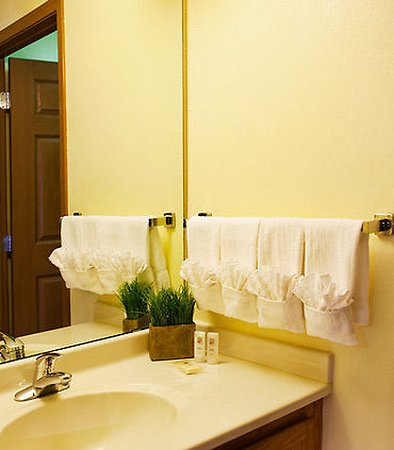 Sterling Heights, Μίσιγκαν: Suite Bathroom