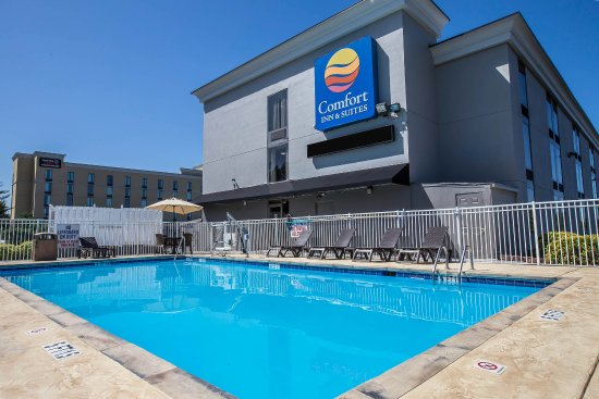 Comfort Inn & Suites : Pool