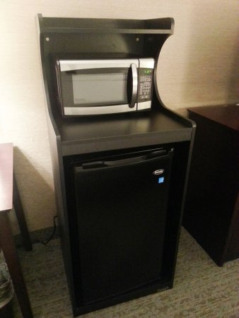 Carle Place, NY: Enjoy the convenience of an in-room microwave and refrigerator.