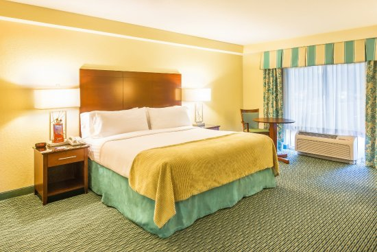 Holiday Inn Resort Orlando Suites   Waterpark   UPDATED 2017 Hotel Reviews    Price Comparison  FL    TripAdvisor. Holiday Inn Resort Orlando Suites   Waterpark   UPDATED 2017 Hotel