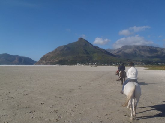 Noordhoek, South Africa: back to the stable