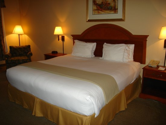 Holiday Inn Express Hotel and Suites: Single Bed Guest Room