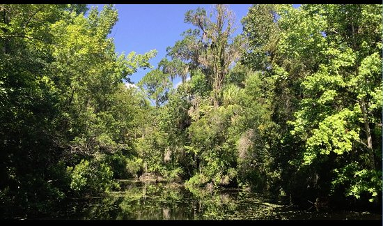 Homosassa Springs, FL: Boat ride to the Park