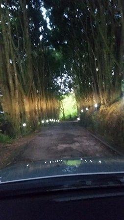 El Castillo, Costa Rica: Driving out of the hotel area
