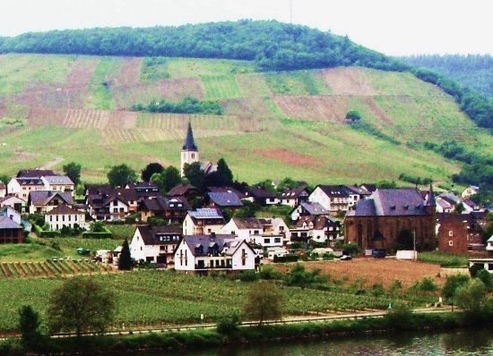 Hotel Haus Lipmann: A view from the room; the other side of the river Mosel.
