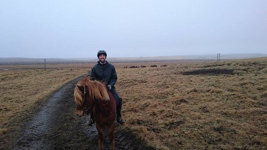 Icelandic HorseWorld : Riding Stútor the Icelandic Horse in Hella at Ice Events in February!