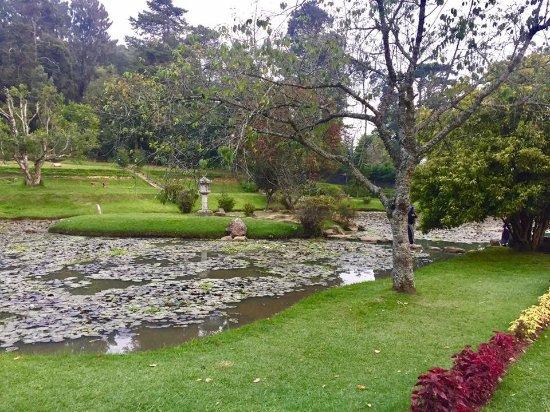Victoria Park of Nuwara Eliya: photo0.jpg