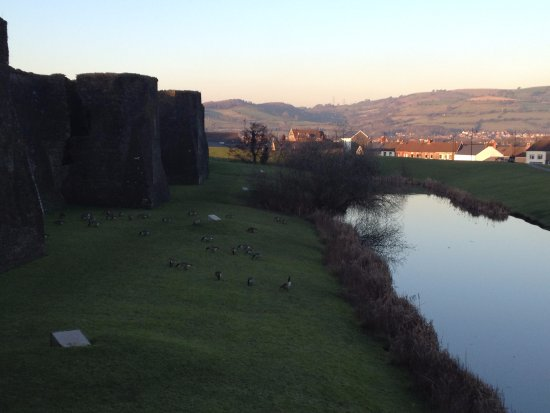 Caerphilly, UK: Gorgeous moat filled with wildlife
