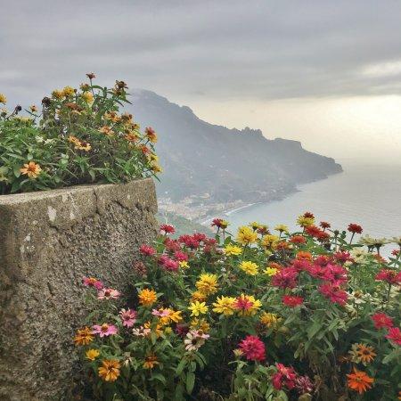 Villa Rufolo : Gorgeous varieties of flowers