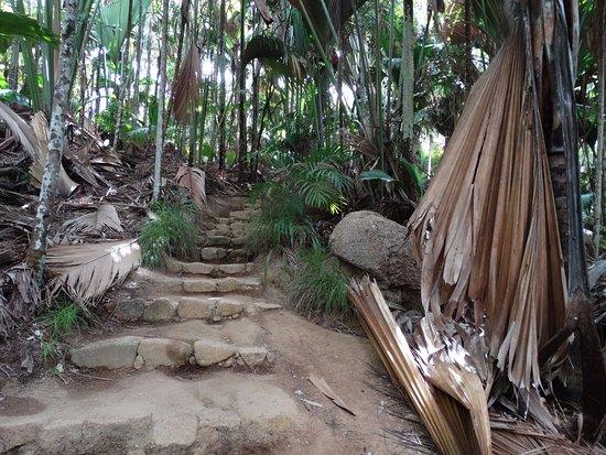Praslin Island, Seychelles: een andere wandelroute