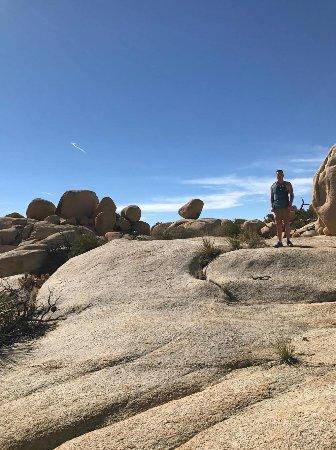 Joshua Tree, Καλιφόρνια: Very cool rock formations!