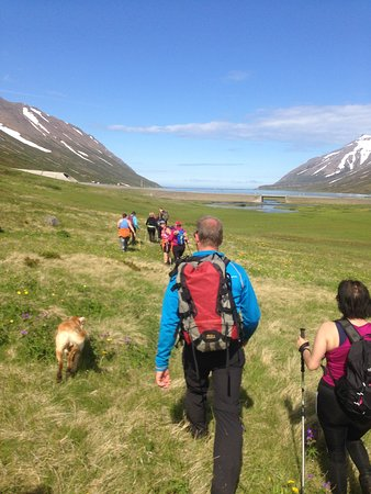 Siglufjordur, Iceland: Top Mountaineering