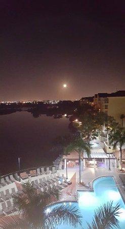 Marriott's Villas at Doral: Hermosa vista desde el balcón de la habitación, abajo la piscina del hotel