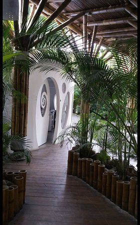 Cocles, Costa Rica: Walking into the hotel from the street