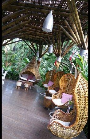 Cocles, Costa Rica: Reception/Check-in area