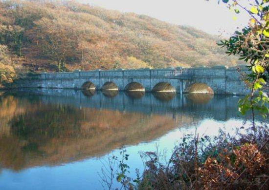 Burrator Reservoir: Burrator dam