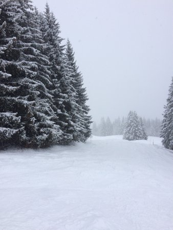 Hotel Terminus Mont-Blanc : photo9.jpg