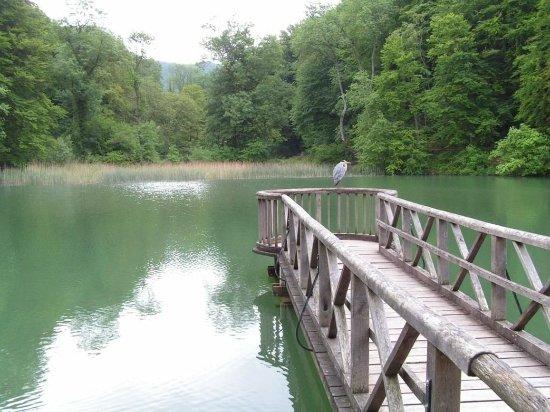Arlesheim, Suiza: Other