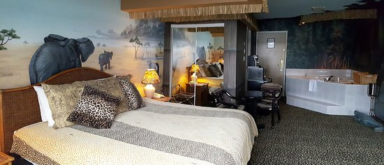 "Anchor Inn & Suites: ""The Safari Suite"""