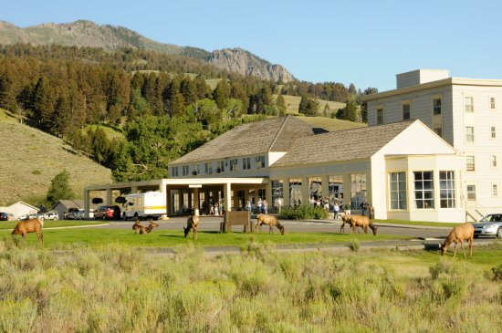 Mammoth hot springs hotel cabins updated 2018 prices for Cabins in wyoming near yellowstone