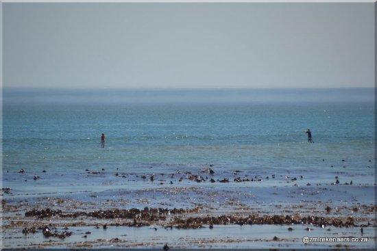 Melkbosstrand, Zuid-Afrika: Sea travellers