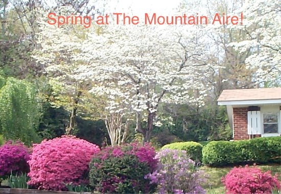Mountain Aire Cottages & Inn Photo
