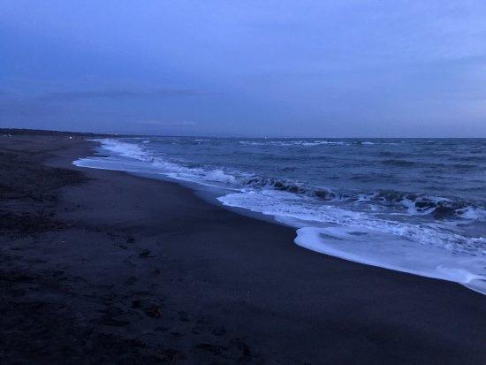 Montalto di Castro, إيطاليا: Vista dal ponteggio
