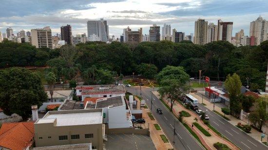 Bosque dos Buritis Photo