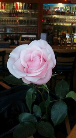 Lee's Inlet Kitchen: A Beautiful Rose was given to all of us women on Valentine's Day...very sweet...
