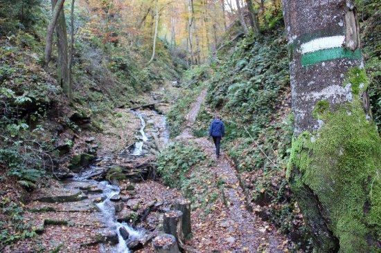 Leutschach, Austria: Heiligengeistklamm