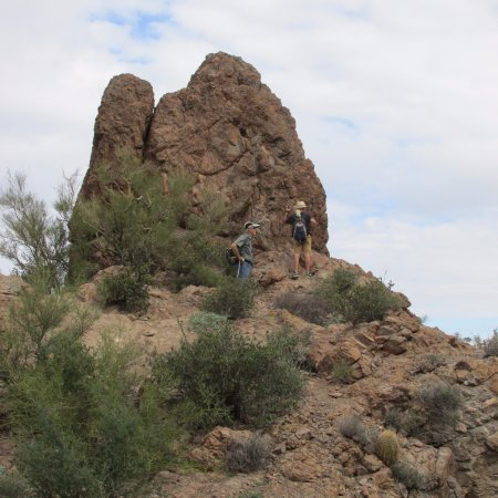 Apache Junction, AZ: Fellow hikers on the trail