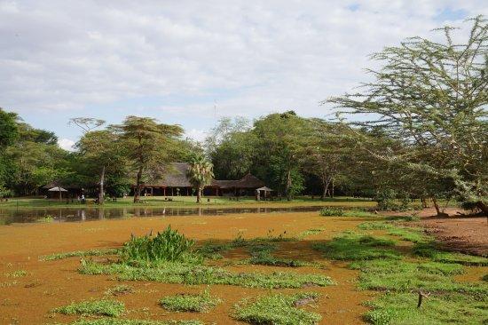 Voyager Ziwani, Tsavo West Resmi