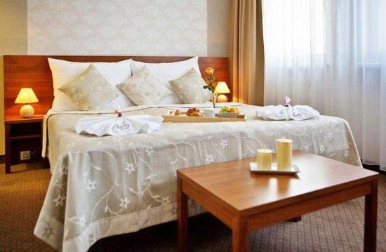 Liptovsky Mikulas, Slovakia: Double Room