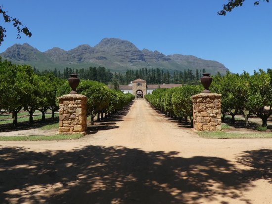 Claremont, South Africa: photo0.jpg