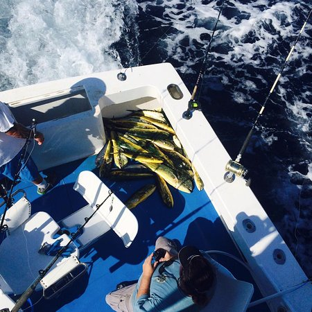 Seaducer Sportfishing Charters
