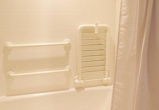 Fletcher, NC: Accessible Guest Bathroom