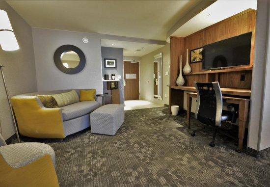 Fletcher, Carolina del Norte: Suite - Seating Area