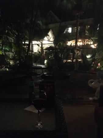 The Mermaid & The Alligator: View of house in garden from Cabana at night (notice wine glass)