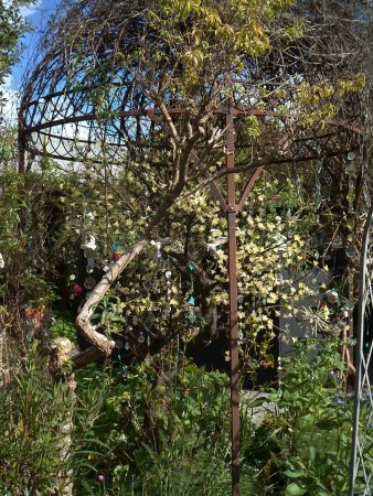 Spellbound Herb Gift Shop and Garden: arbor of hanging mirrors