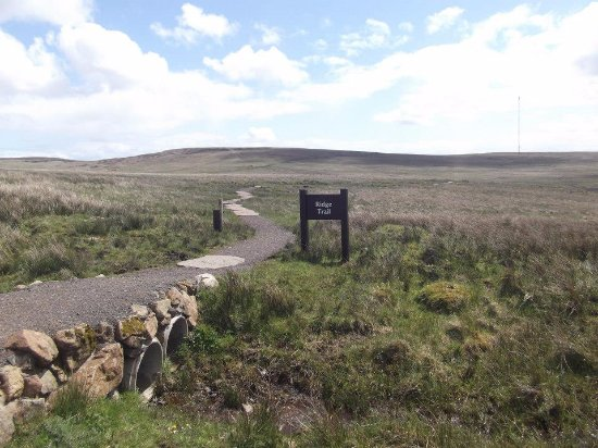 Black Mountain: One of the walks.